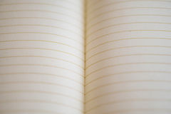 Closeup of dissolved notebook - real sheet of notebook lines. Su. Itable for background card ect. Conception School Stock Photo
