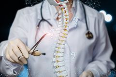 A doctor operating with spin model. A closeup of a doctor with stethoscope operating with artificial spine model of human skeleton with tweezers with question royalty free stock photo