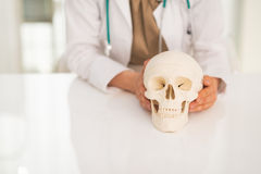 Closeup on doctor woman holding human skull Stock Photography