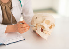 Closeup on doctor woman pointing on human skull Royalty Free Stock Photo