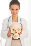 Closeup on doctor woman showing human skull Royalty Free Stock Photography
