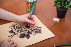 Closeup of drawing roses at the desk Stock Photos