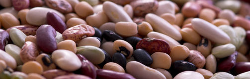 Closeup of dried beans Stock Photography