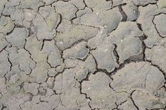 Closeup of dried and crackled ground texture Stock Images