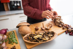 Closeup on dried mushrooms Royalty Free Stock Image