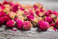 Closeup of dried rose buds royalty free stock photo