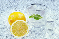 Closeup of drink with citrus fruit and ice Royalty Free Stock Photos