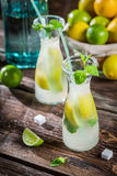 Closeup of drink with citrus fruit and ice Stock Photography