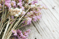 Closeup of dry flowers composition Royalty Free Stock Image