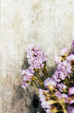 Closeup of dry flowers composition Royalty Free Stock Photography