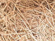 Free Closeup Dry Grass In Country Farm, Background And Texture, Top Down And  Horizontal View. Stock Image - 179951991
