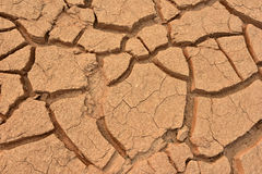 Closeup of dry land Royalty Free Stock Photography