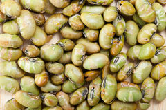 Closeup dry roasted and salted edamame nuts, green nut Royalty Free Stock Images