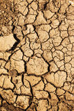 Closeup of dry soil Royalty Free Stock Photos