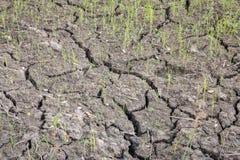 Closeup of dry soil Stock Photos