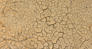 Closeup of dry soil texture Royalty Free Stock Image