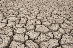 Closeup of dry soil Stock Images