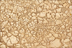 Closeup of dry soil texture Royalty Free Stock Images