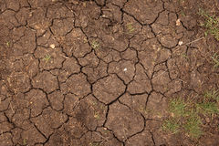 Closeup of dry soil texture Stock Images