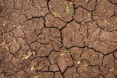 Closeup of dry soil texture Royalty Free Stock Photography