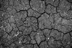 Closeup of dry soil texture Royalty Free Stock Photos