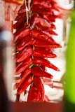 Pepper Closeup. Closeup of drying hot red pppers at Espelette, Pays Basque, France Royalty Free Stock Photo