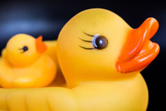 Closeup duck toy Royalty Free Stock Images