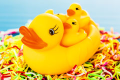 Closeup duck toy Stock Photography