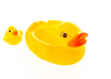 Closeup duck toy on white background. Stock Image