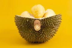 Closeup of durian fruits Royalty Free Stock Image