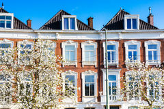 Closeup dutch houses and tree blossom in Hague, Holland Stock Photography