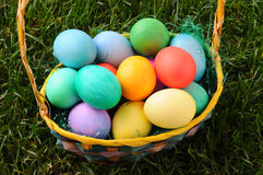 Closeup Easter Basket with Dyed Eggs Royalty Free Stock Photo