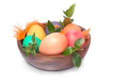 Closeup on Easter eggs with green leaves Stock Image