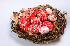 Closeup Easter red eggs with folk white pattern inside bird nest on white background stock image