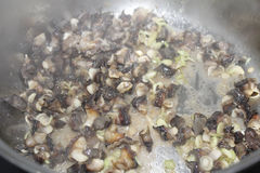 Closeup of eating the fried snails with stalks lemon grass Stock Image