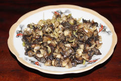 Closeup of eating the fried snails with stalks lemon grass Stock Images