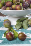 Closeup from ecological plums Royalty Free Stock Photography