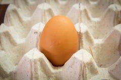 Closeup egg on crate. Stock Photo