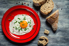 Closeup of egg served with parsley and bread Stock Images