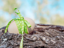 Closeup of an egg on wood with focus on the ribbon bow and low d Royalty Free Stock Photography
