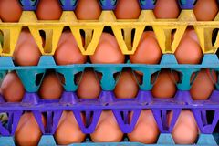 Closeup of eggs on cartons at supermarket.  Royalty Free Stock Image