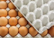 Closeup eggs in paper tray with cover. Stock Photo
