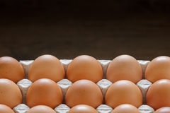 Closeup eggs in paper tray with  space. Royalty Free Stock Photography