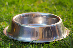 Closeup empty metal bowl for dog food sitting on green grass, animal nutrition concept.  stock images
