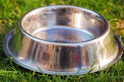 Closeup empty metal bowl for dog food sitting on green grass, animal nutrition concept Stock Photo