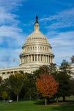 Closeup ensamma Dayli för detalj för kupol för USA-KapitoliumBuiding Washington DC Royaltyfria Foton
