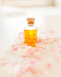 Closeup of essential oil and rose petals Stock Images