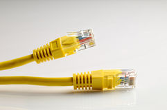 Closeup of the ethernet cables RJ45 isolated. Closeup of the yelow ethernet cables isolated Royalty Free Stock Images
