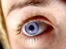 Closeup of Eye Royalty Free Stock Photography
