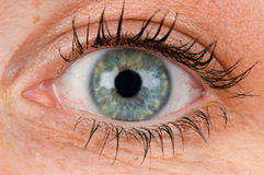 Closeup of an eye Stock Photos